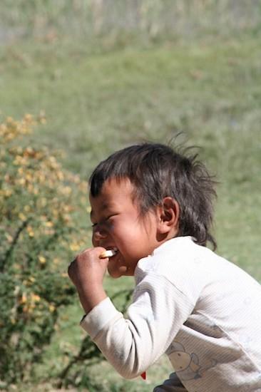 pictures Tibet