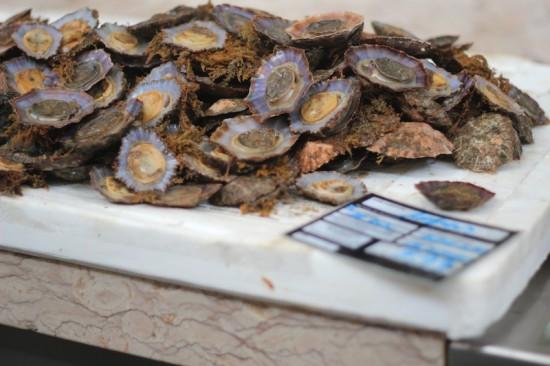 lapa funchal fish market