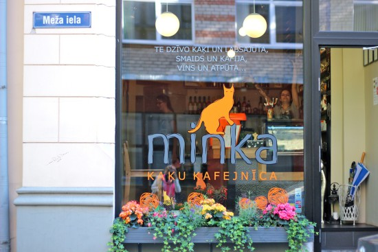 Minka cat cafe