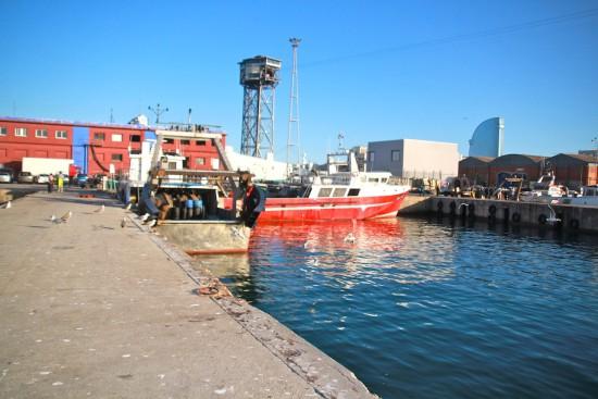 Barceloneta Fisheries Barcelona fish