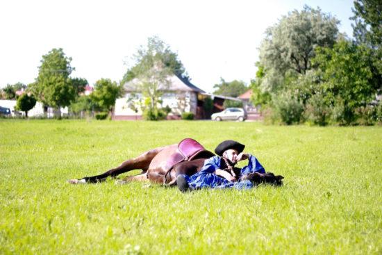Puszta Hungary Hajdúszoboszló Debrecen travel horse horses