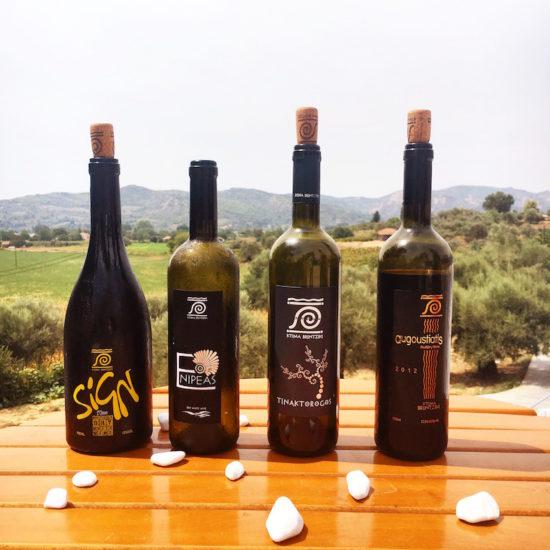 Organic wine tasting Ktima Brintziki