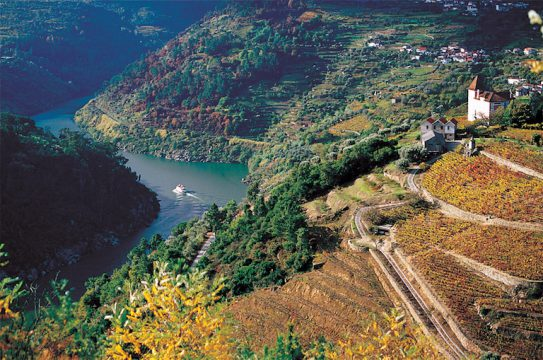 Douro wine valley Portugal