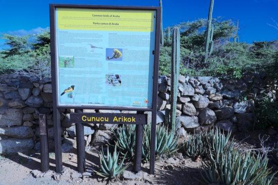 Arikok National Park Aruba things to do in Aruba