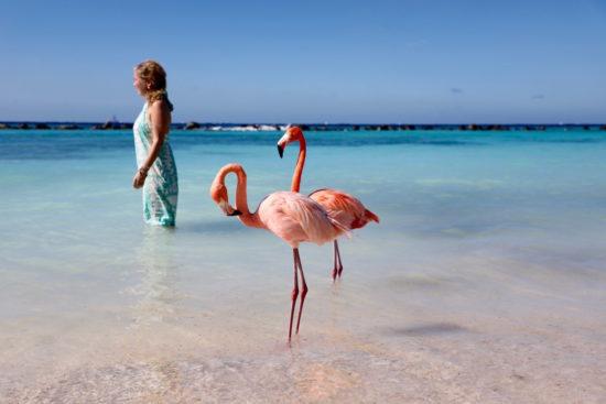 Jeannette van Mullem flamingo beach Aruba purefoodtravel