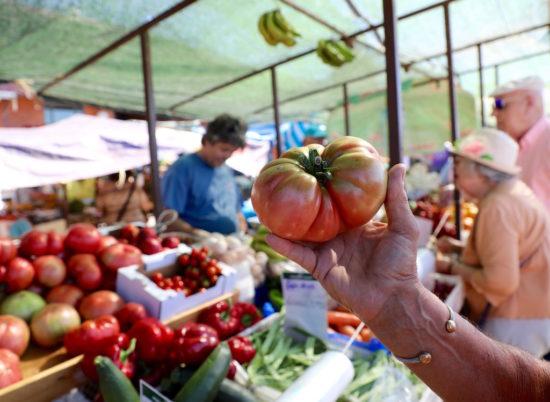 Olhão mercado municipal market