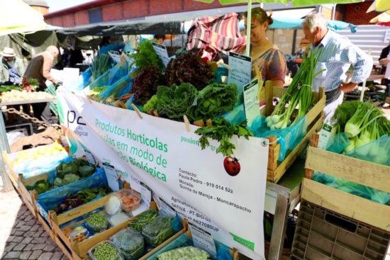 Olhão mercado municipal organic food market